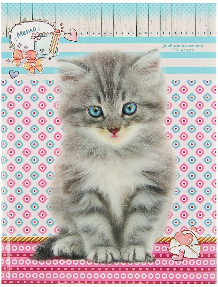Проф-Пресс Дневник школьный Серый котик для 1-4 классов2093474