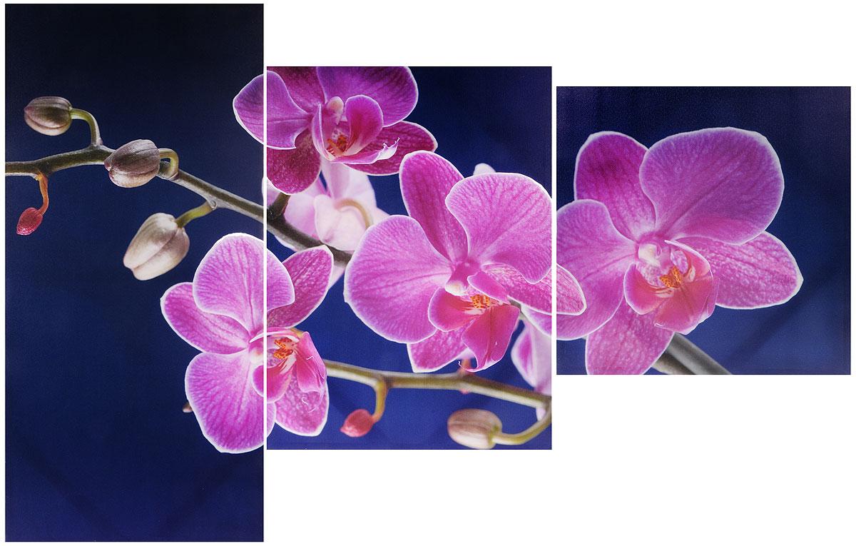 Картина модульная Toplight Цветы, 150 х 50 см. TL-M2026 орхидеиTL-M2026_орхидеиКартина модульная Toplight Цветы, 150 х 50 см. TL-M2026 орхидеи