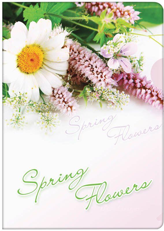 Berlingo Папка-уголок Spring FlowersAGp_04031Пластиковая папка -уголок с ярким рисунком. Боковой вырез предназначен для удобного извлечения листов.