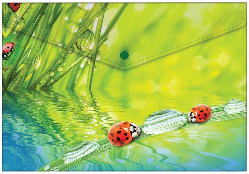 Berlingo Папка-конверт на кнопке LadybirdAKk_04032Папка-конверт Berlingo Ladybird - это удобный и многофункциональный инструмент, который идеально подойдет для хранения и транспортировки различных бумаг и документов формата А4. Папка изготовлена из прочного пластика, закрывается на кнопку. Папка практична в использовании и надежно сохранит ваши документы и сбережет их от повреждений, пыли и влаги.