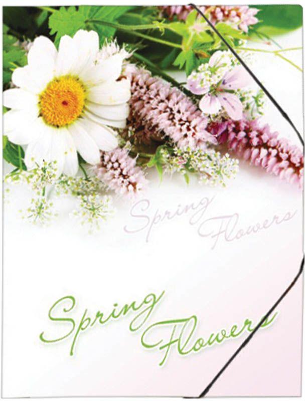 Berlingo Папка на резинке Spring Flowers цветANp_01431Папка на резинке. Изготовлена из пластика высокого качества.Предназначена для транспортировки и хранения документов формата А4. Яркий дизайн, стильный рисунок. Индивидуальная упаковка в пакет.