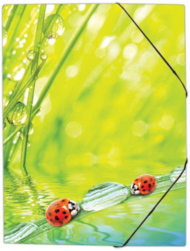 Berlingo Папка на резинке LadybirdANp_01432Папка изготовлена из пластика высокого качества.Предназначена для транспортировки и хранения документов формата А4. Яркий дизайн, стильный рисунок. Индивидуальная упаковка в пакет.