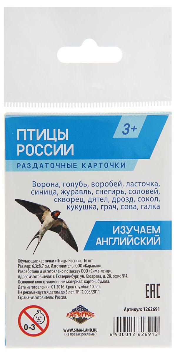 Лас Играс Обучающие карточки Птицы России