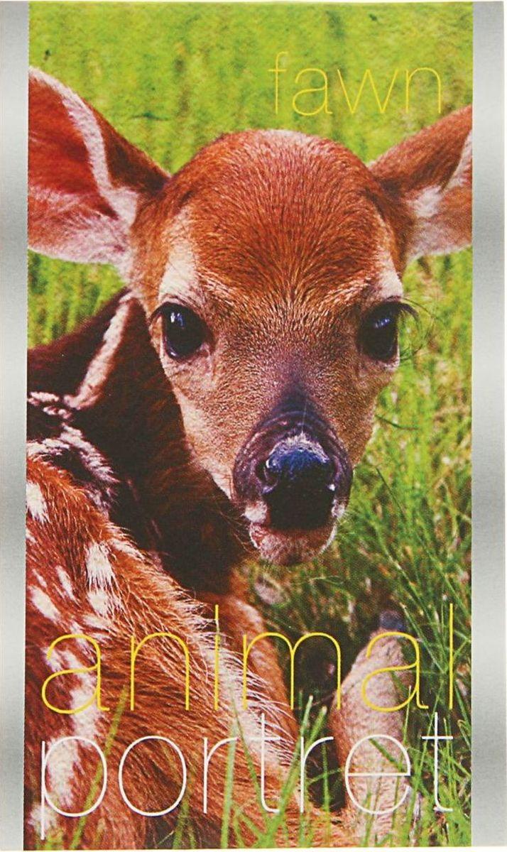 ТетраПром Блокнот Animal Portret 32 листа