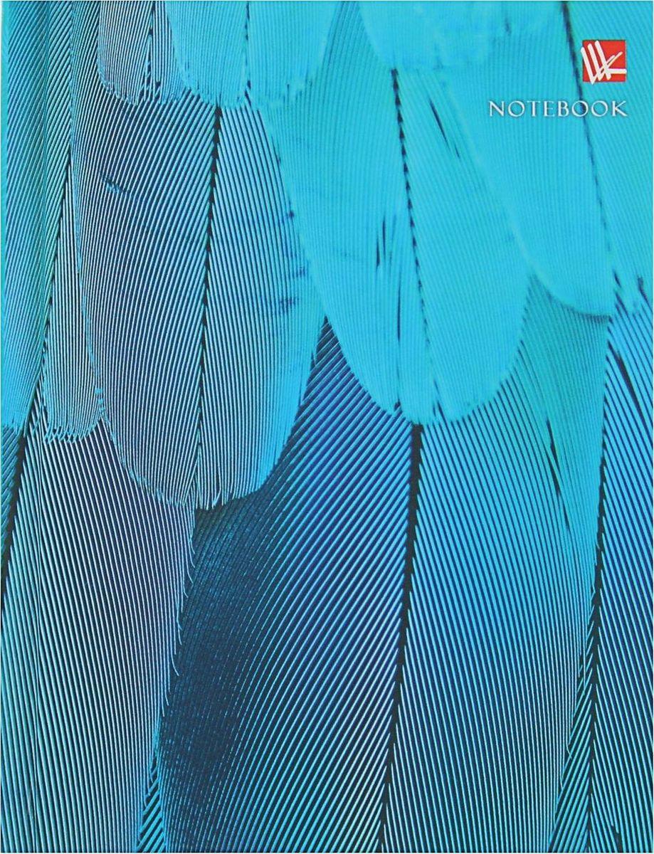 Эксмо Бизнес-блокнот Живая планета Голубое оперение 80 листов1820516