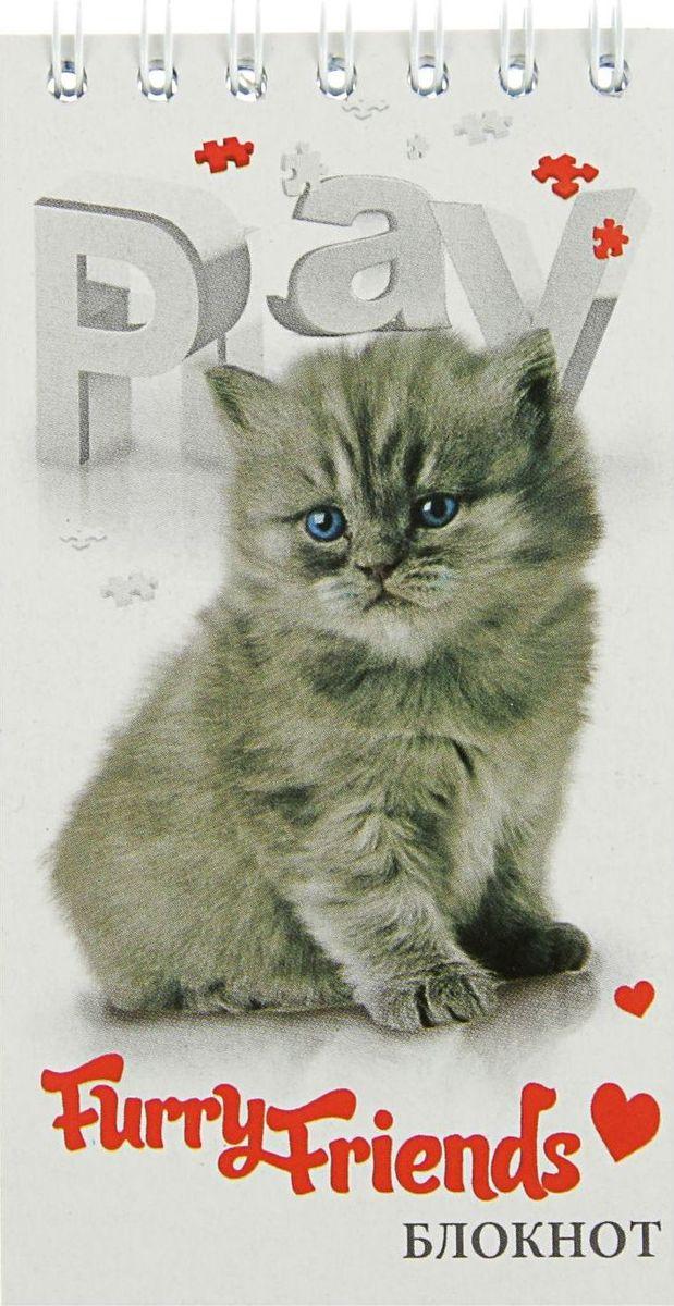 Апплика Блокнот Серый котенок 60 листов