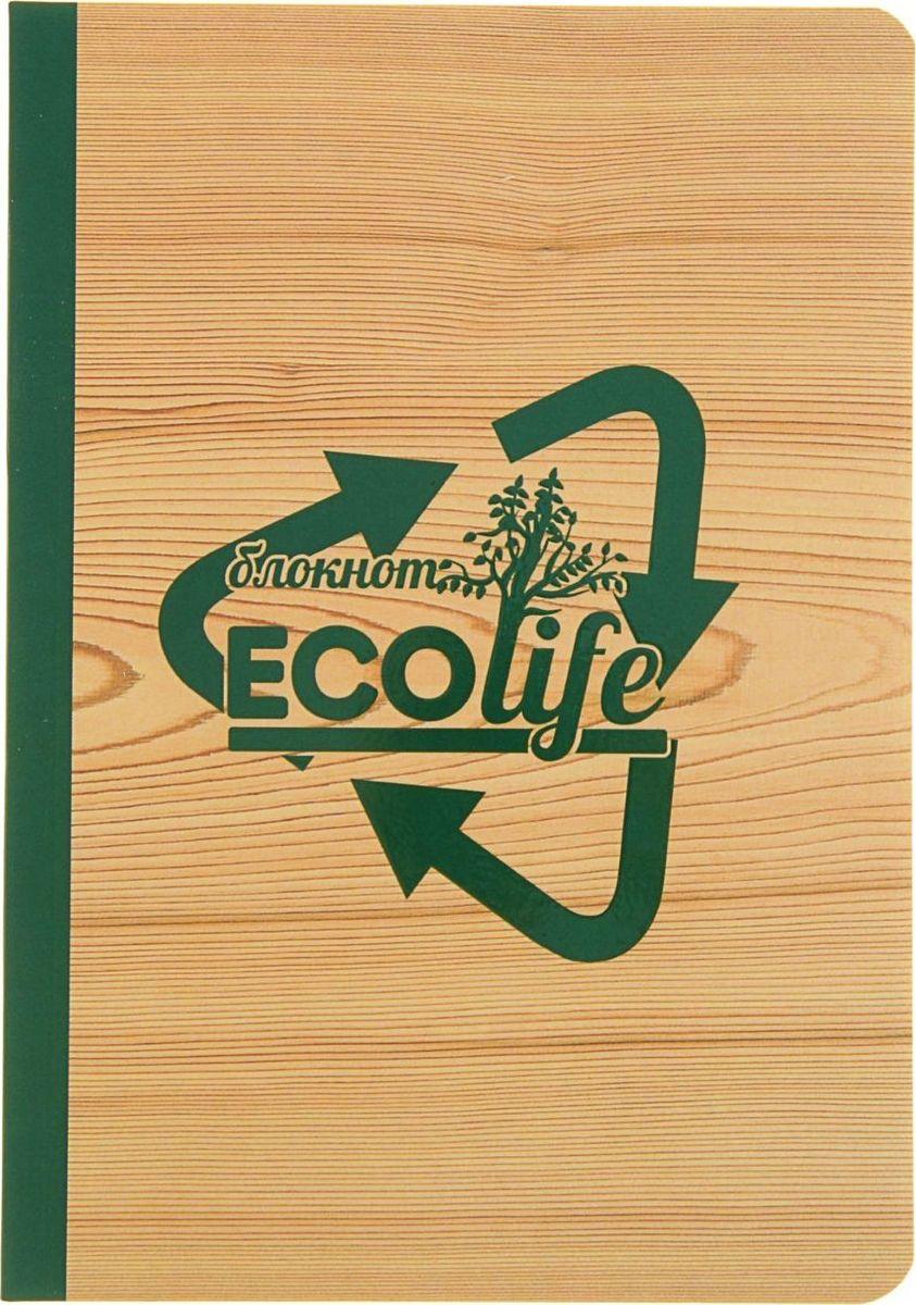 Проф-Пресс Блокнот EcoLife-3 64 листа2093402