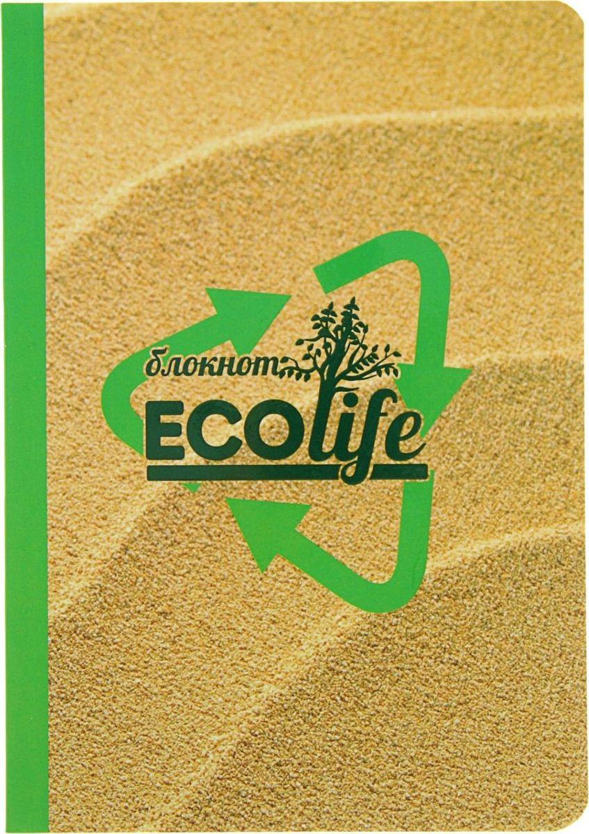 Проф-Пресс Блокнот EcoLife-2 64 листа2093404