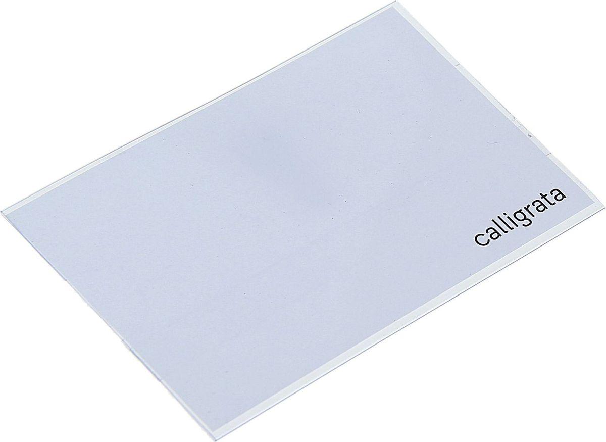 Calligrata Бейдж горизонтальный 5,5 х 8,8 см1293693