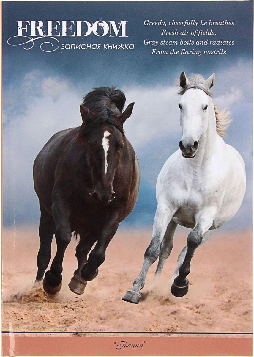 Profit Записная книжка Черная и белая лошадь 64 листа1211516Записная книжка — компактное и практичное полиграфическое изделие, предназначенное для разного рода записей и заметок. Такой предмет прекрасно подойдёт для фиксации повседневных дел. Это канцелярское изделие отличается красочным оформлением и придётся по душе как взрослому, так и ребёнку. Записная книжка твёрдая обложка А5, 64 листа Чёрная и белая лашадь, глянцевая ламинация обладает всеми необходимыми характеристиками, чтобы стать вашим полноценным помощником на каждый день.