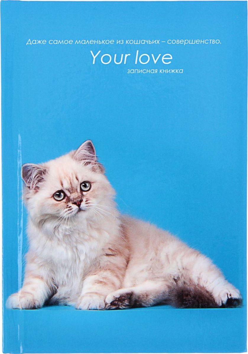 Проф-Пресс Записная книжка Белая кошка на голубом 48 листов1211530Записная книжка — компактное и практичное полиграфическое изделие, предназначенное для разного рода записей и заметок. Такой предмет прекрасно подойдёт для фиксации повседневных дел. Это канцелярское изделие отличается красочным оформлением и придётся по душе как взрослому, так и ребёнку. Записная книжка твёрдая обложка А6, 48 листов Белая кошка на голубом, глянцевая ламинация обладает всеми необходимыми характеристиками, чтобы стать вашим полноценным помощником на каждый день.
