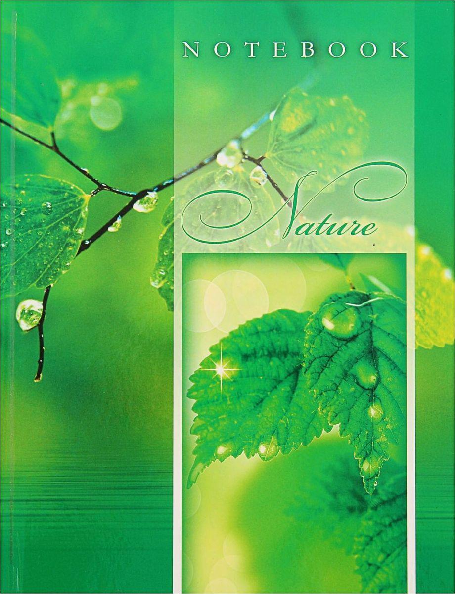 Проф-Пресс Записная книжка После дождя 80 листов1844741
