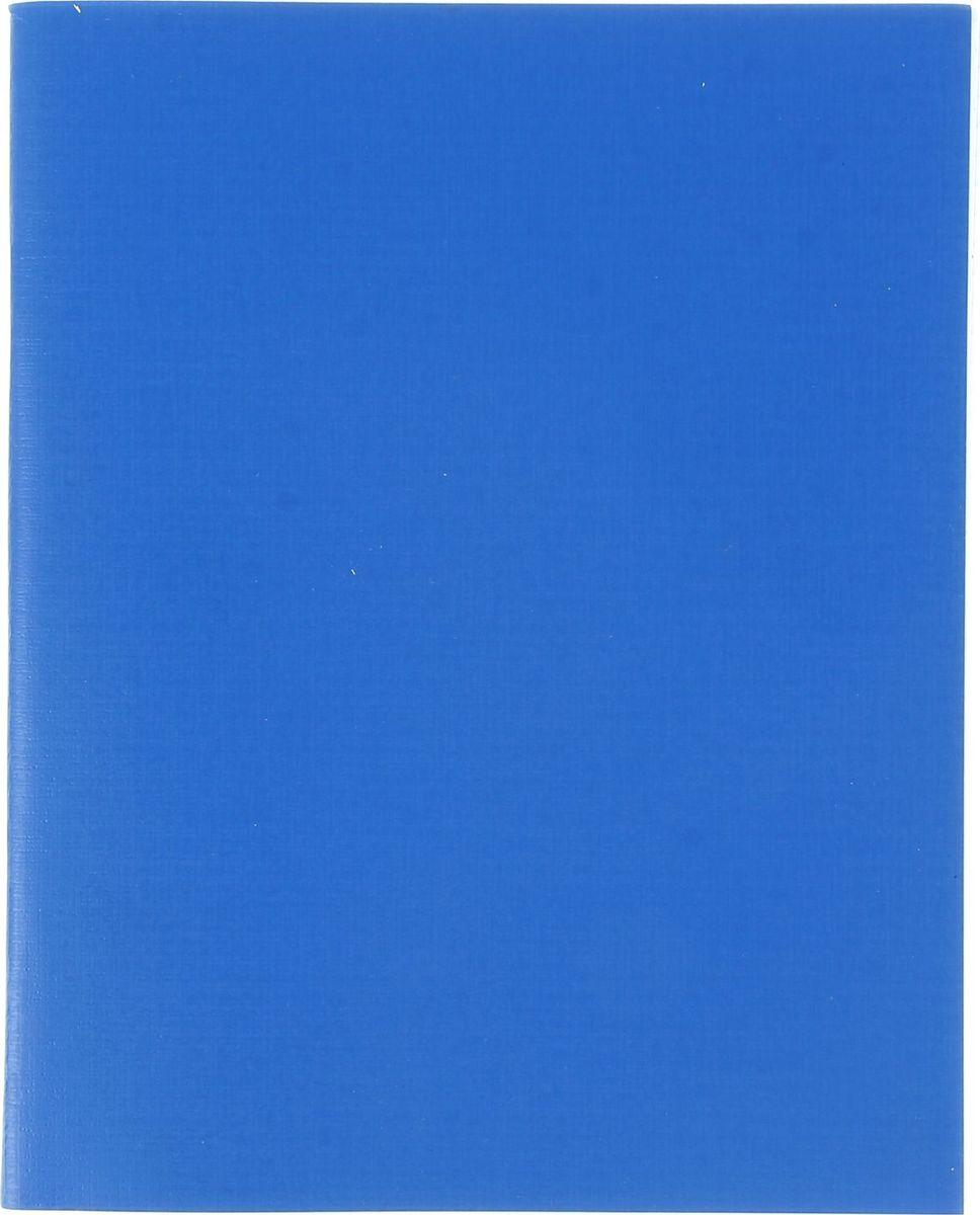 Hatber Тетрадь 96 листов в клетку цвет синий1020846