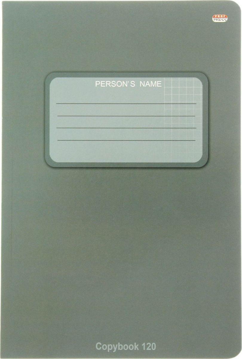 Проф-Пресс Тетрадь 120 листов в клетку цвет серый1544487