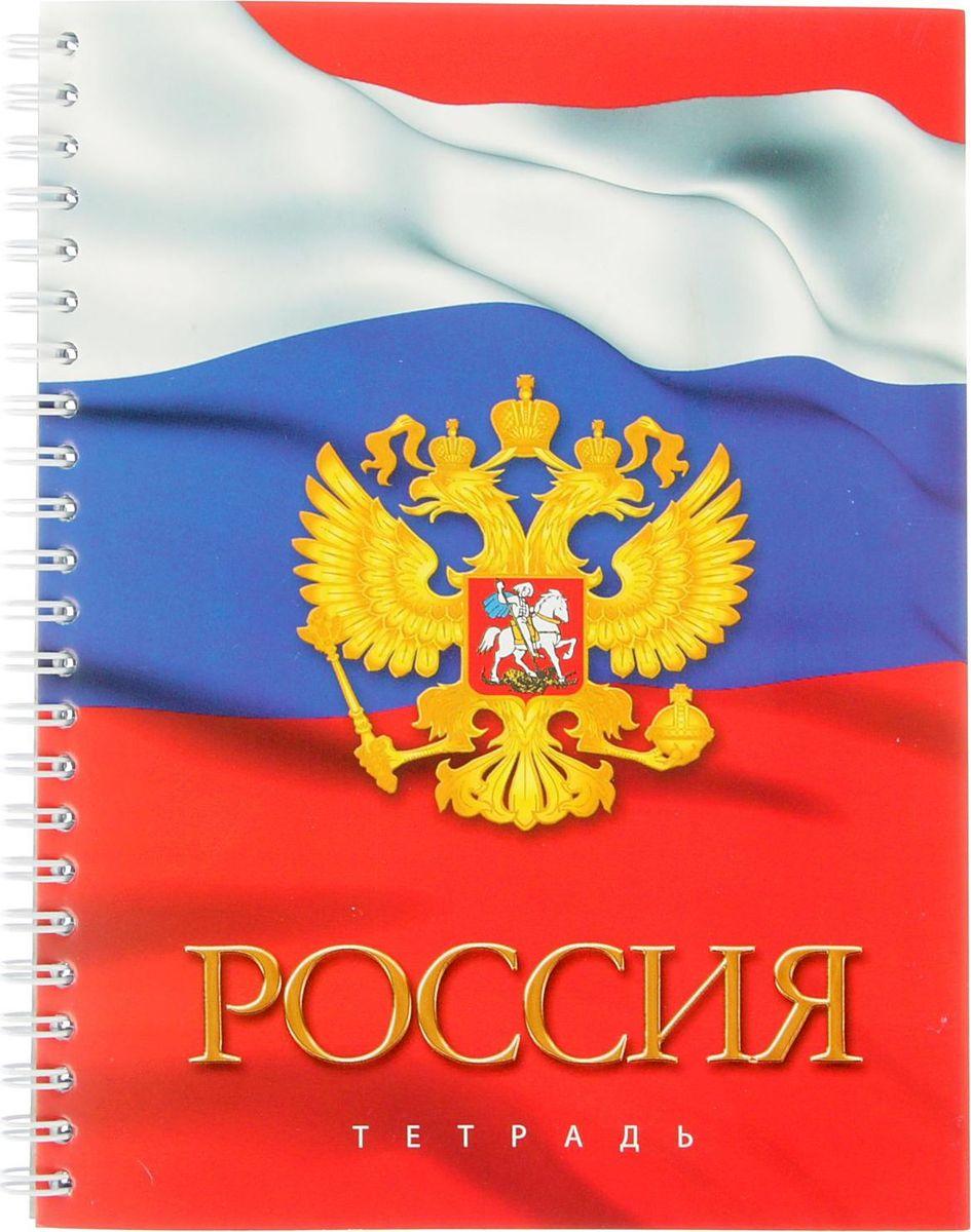 Апплика Тетрадь Российская символика - Герб 3 96 листов в клетку1999539