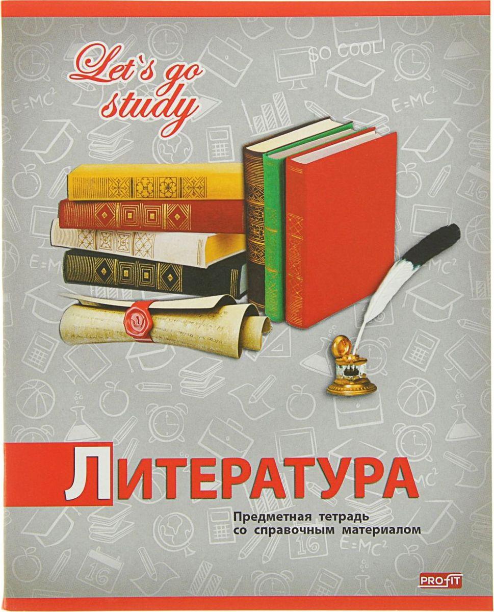 Profit Тетрадь Серебро Литература 36 листов в линейку2093159