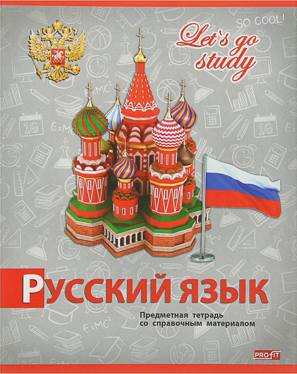 Profit Тетрадь Серебро Русский язык 36 листов в линейку2093160