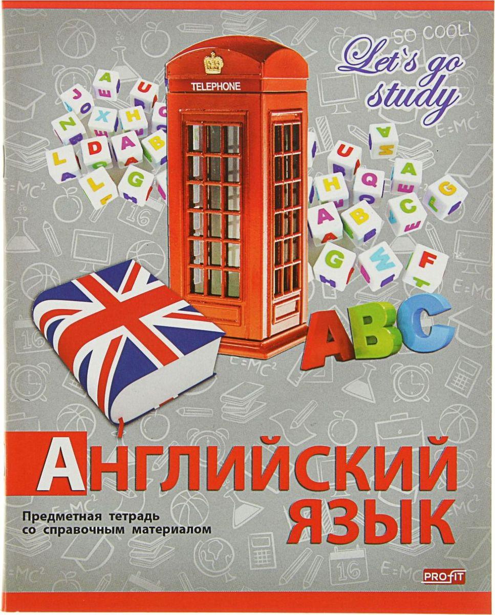 Profit Тетрадь Серебро Английский язык 36 листов в клетку2093162