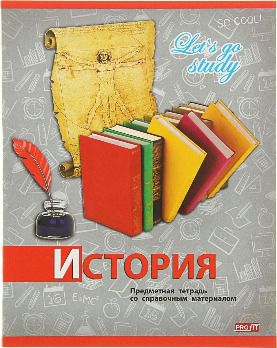 Profit Тетрадь Серебро История 36 листов в клетку2093168
