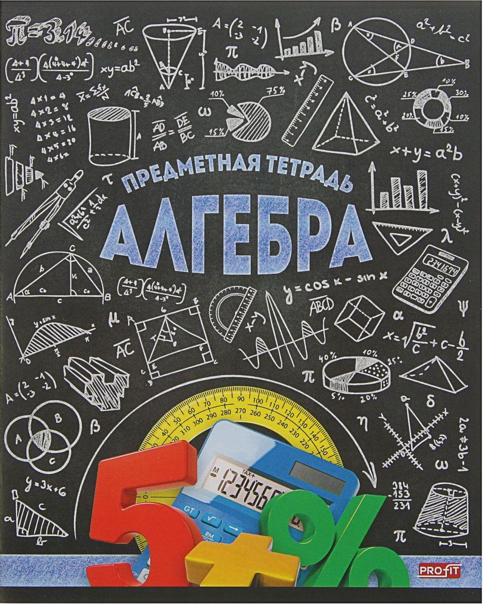 Profit Тетрадь Стильная Алгебра 48 листов в клетку2170885