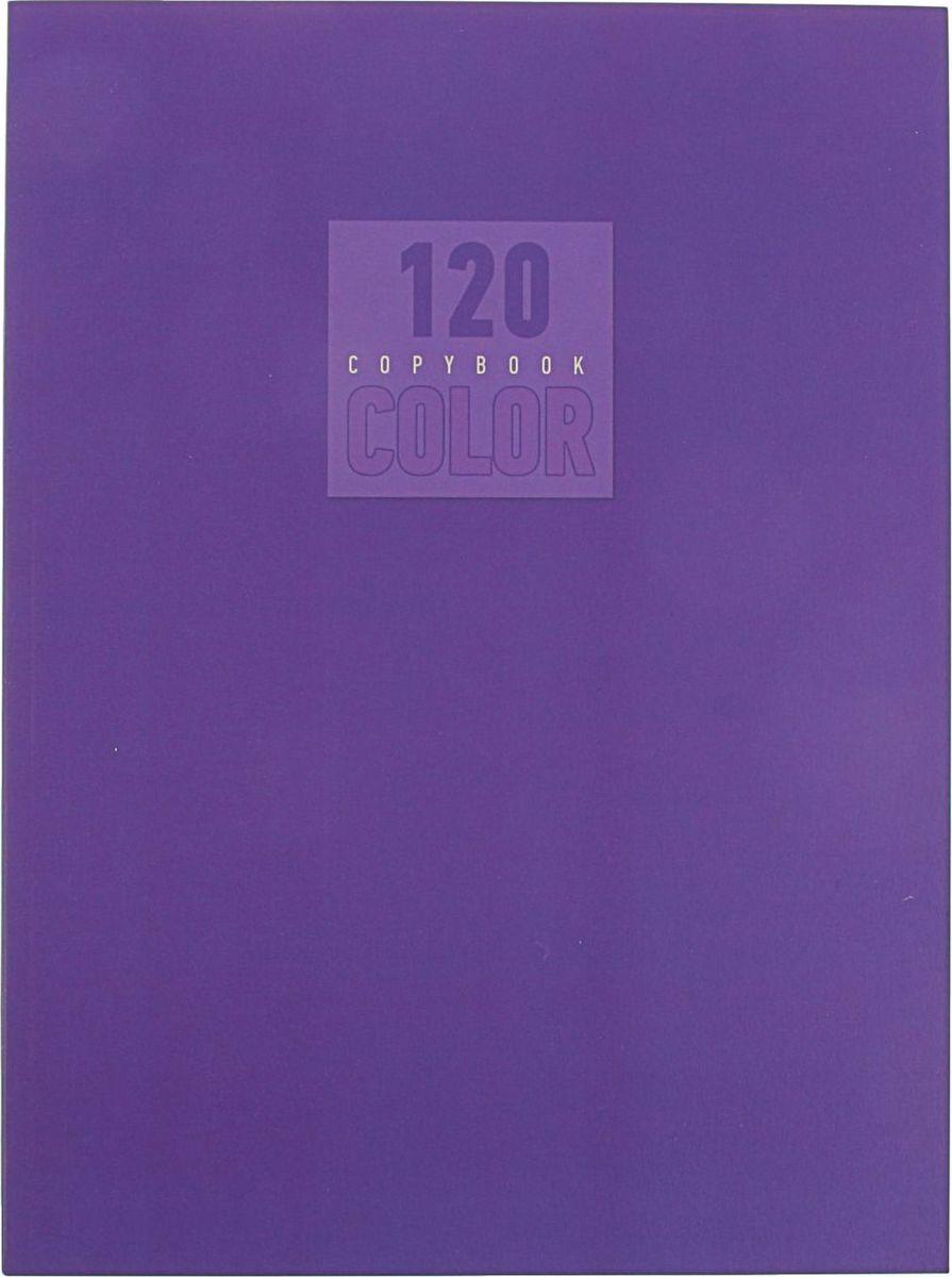 Эксмо Тетрадь Стиль и цвет 120 листов в клетку цвет лиловый2174074