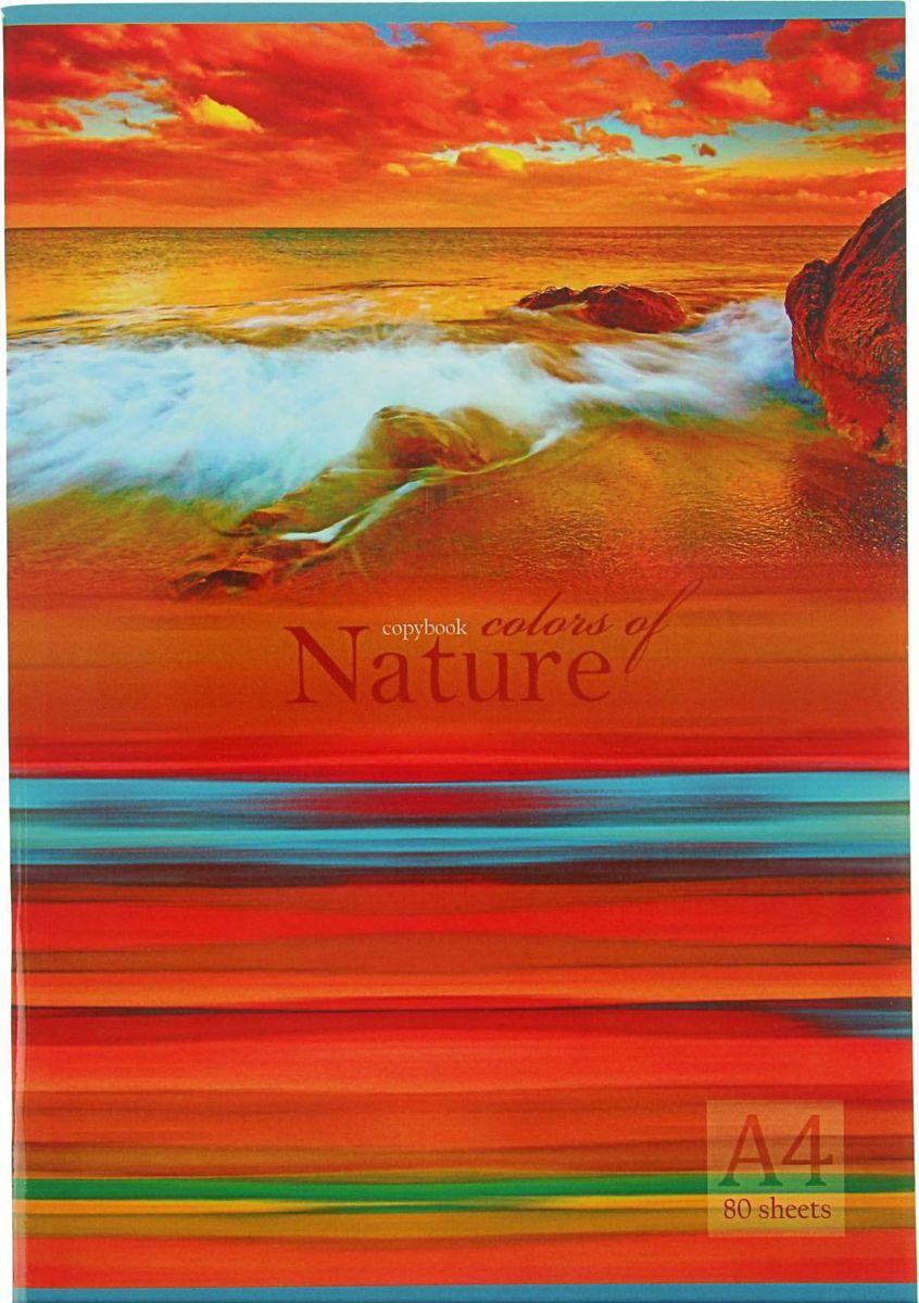 BG Тетрадь Краски природы 80 листов в клетку2304394