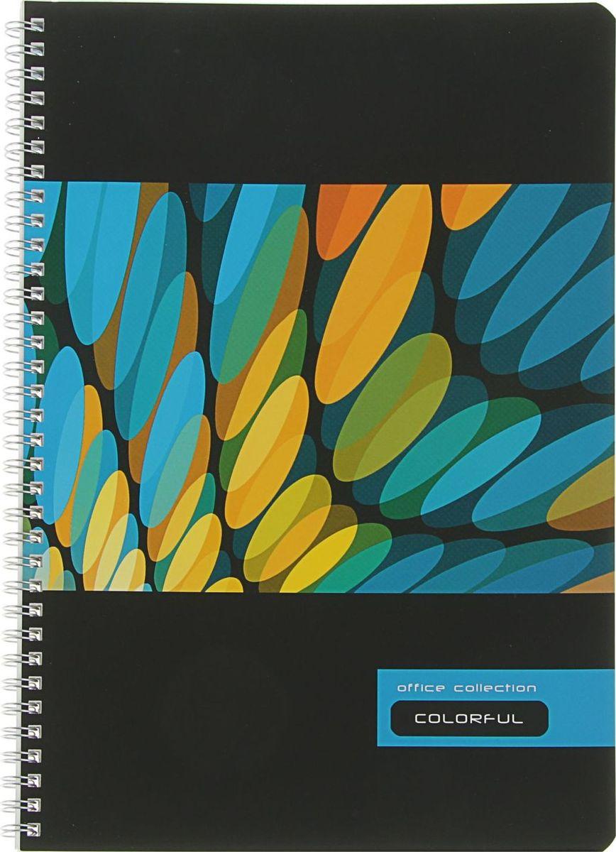 BG Тетрадь Colorful-2 80 листов в клетку2304395