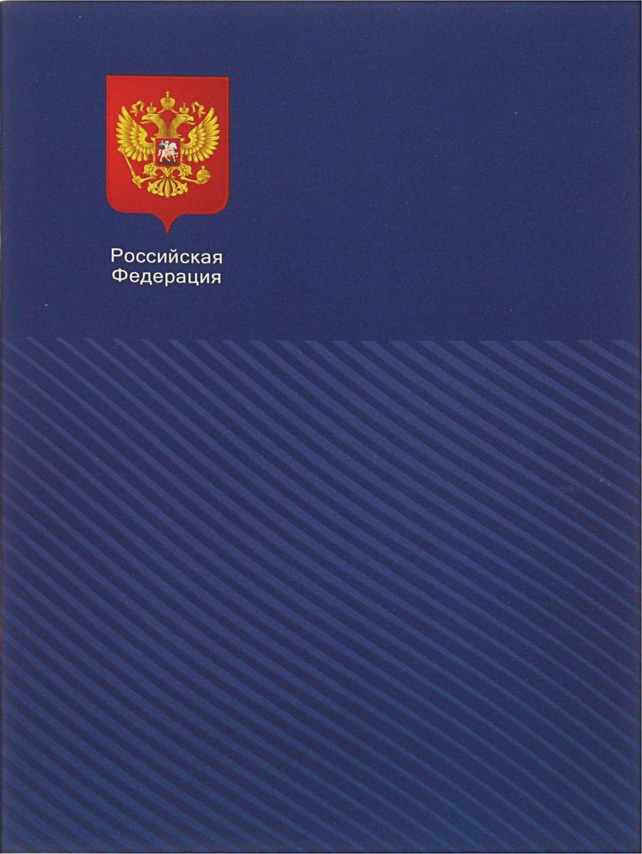 BG Тетрадь Российская Федерация 80 листов в клетку цвет синий2304398
