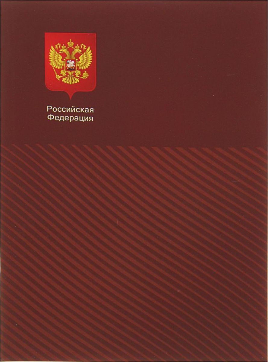 BG Тетрадь Российская Федерация 80 листов в клетку цвет коричневый2304399
