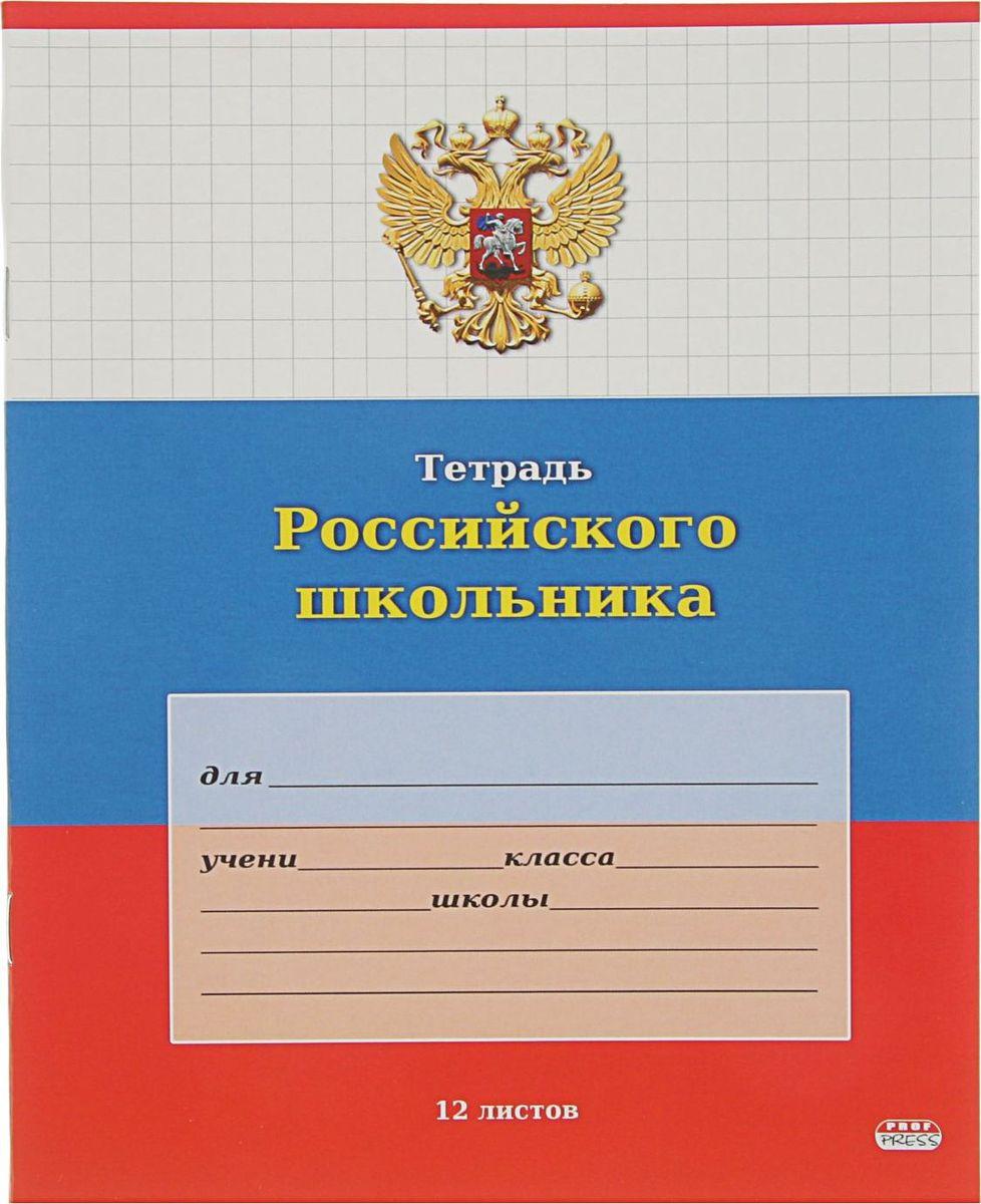 Проф-Пресс Тетрадь Российского школьника 12 листов в клетку