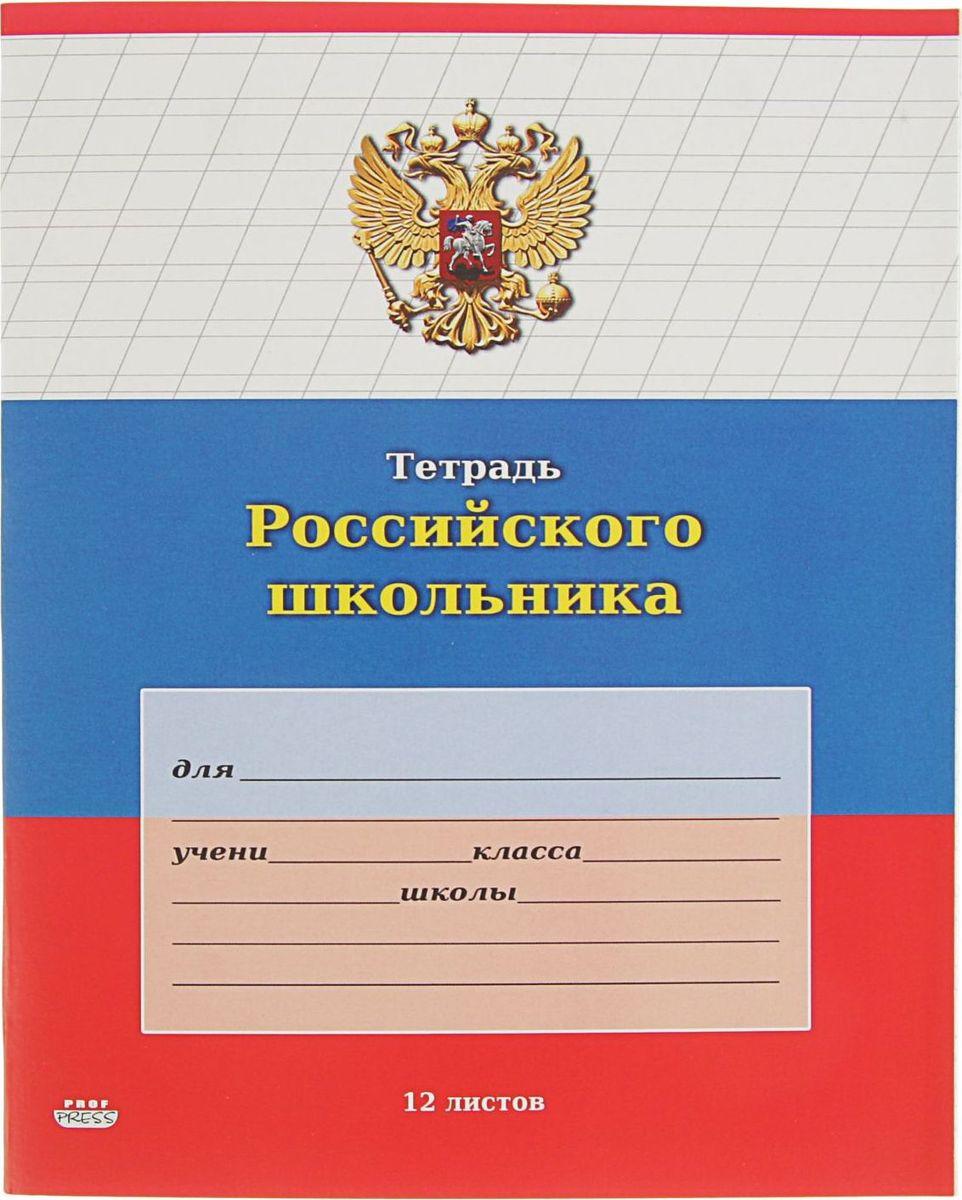 Проф-Пресс Тетрадь Российского школьника-2 12 листов в косую линейку