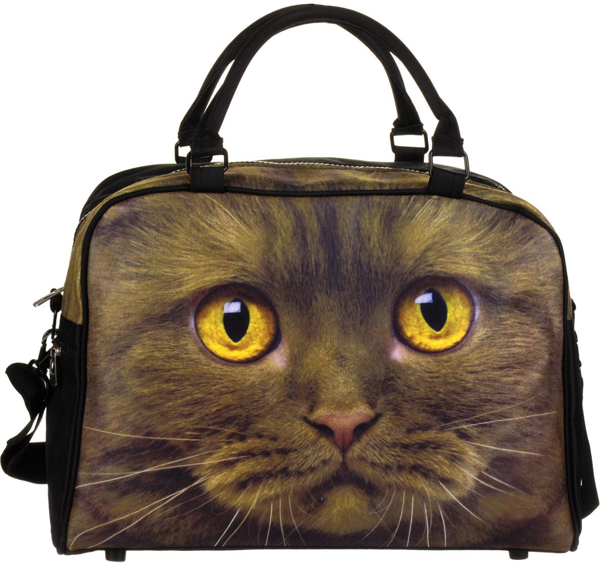 Сумка Hatber HD Trend Line, цвет: черный, зеленый. NS_00043 The CatNS_00043Молодежная сумка Hatber HD Trend Line изготовлена из флиса и украшена изображением кошки. Сумка имеет одно вместительное отделение на пластиковую молнии. Внутри имеется дополнительный карман на застежке-молнии. Сбоку сумка оснащена карманом на молнии. Сумка имеет две удобные прочные ручки и съемный ремень регулируемой длины для ношения через плечо. Дно сумки оформлено пластиковыми ножки для защиты от грязи.