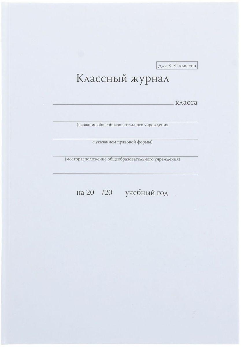 Классный журнал для 10-11 классов 92 листа1113885