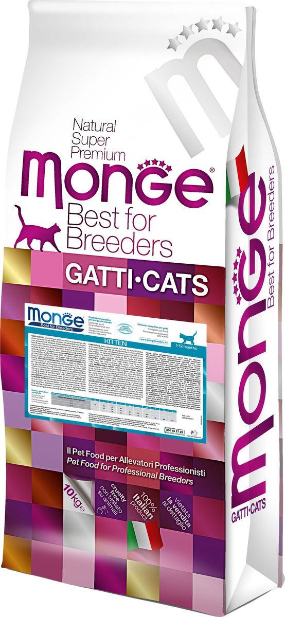 Корм сухой для котят Monge Cat, 10 кг70004817Monge Cat корм для котят 10 кг Полноценный сбалансированный рацион для котят обеспечивает высококачественное питание для здорового роста котят в возрасте от 1 до 12 месяцев. Рекомендуется для кормления беременных и лактирующих кошек. Содержит важнейшие антиоксиданты, такие как витамин Е, для поддержки иммуной системы. Гарантированный анализ: сырой белок 34%, сырые масла и жиры 20%, сырая клетчатка 2,5%, сырая зола 6,5%, кальций 1,5%, фосфор 1,1%, магний 0,09%, Омега-6 жирные кислоты 8, 98%, Омега-3 жирные кислоты 1%. Пищевые добавки/кг: витамин А (ретинола ацетат) 26 000 МЕ, витамин D3 (холекальциферол) 1 830 МЕ, витамин Е (альфа-токоферол ацетат) 130 мг, витамин B1 (тиамина нитрат) 12 мг, витамин В2 (рибофлавин) 12 мг, витамин В6 (пиридоксинагидрохлорид) 7 мг, витамин В12 0,10 мг, биотин 0,30 мг, никотиновая кислота 46 мг, витамин С 200 мг, пантотеновая кислота 12 мг, фолиевая кислота 16 мг, холина хлорид 3000 мг, инозитол 15 мг, сульфат марганца моногидрат 100 мг...