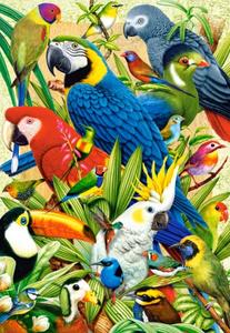 Настольная игра Птичий мир, Пазл 1000 деталей