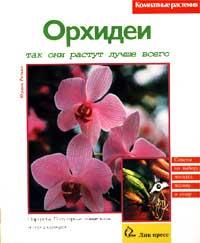 Орхидеи. Так они растут лучше всего