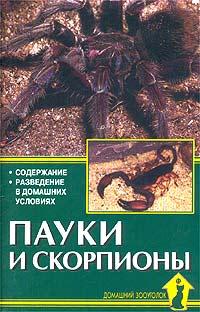 Пауки и скорпионы ( 978-5-904880-28-6, 978-5-98435-957-3 )