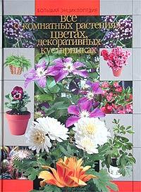 Все о комнатных растениях, цветах, декоративных кустарниках