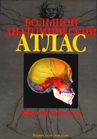 Большой анатомический атлас