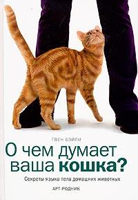 О чем думает ваша кошка? Секреты языка тела домашних животных.