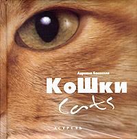 Кошки / Cats. Адриано Баккелла