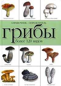 Грибы. Справочник-определитель. Более 120 видов