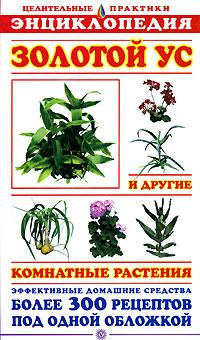 Золотой ус и другие комнатные растения