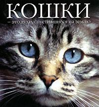 Кошки - это духи, спустившиеся на землю