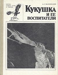 Кукушка и ее воспитатели. А. С. Мальчевский