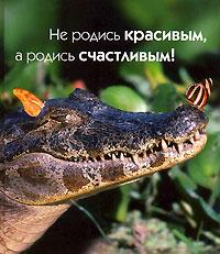 Не родись красивым, а родись счастливым! ( 5-17-038037-2, 5-271-14325-2 )