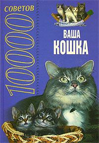 10000 советов. Ваша кошка