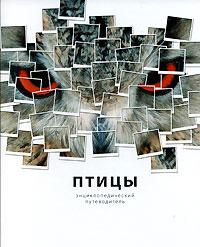 Птицы. Энциклопедический путеводитель. Джоанна Бургер