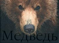 Медведь / Bear. Сергей Горшков