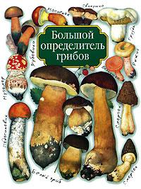 Большой определитель грибов. А. В. Юдин